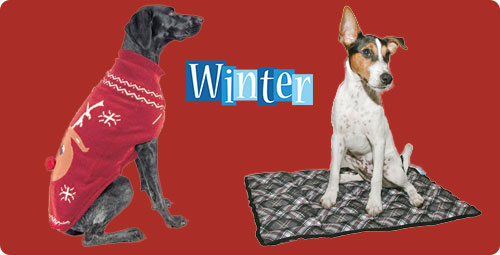 hondenkleding en hondendekens winter